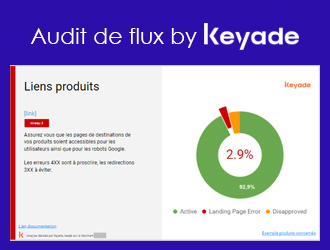 Audit de flux